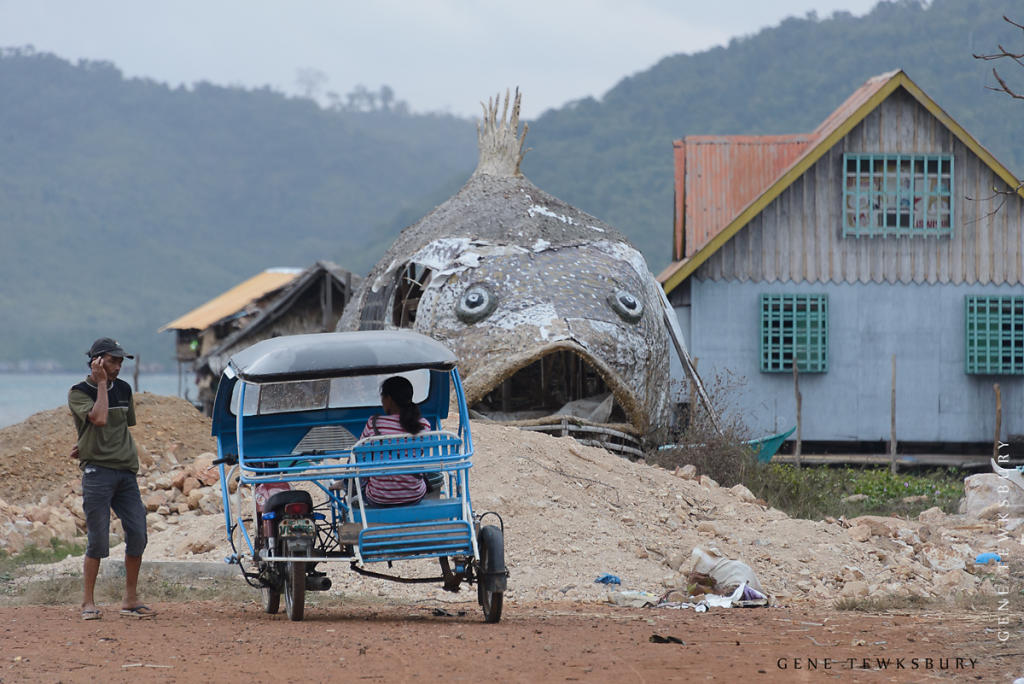 Fish, House, Tricycle