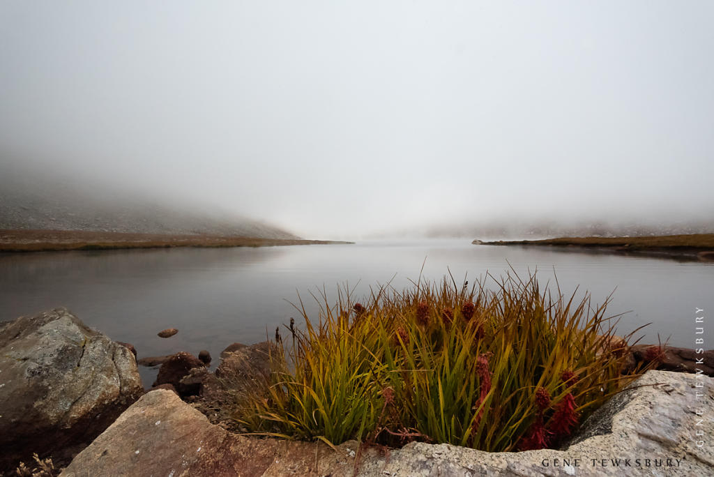 Summit Lake in the fog